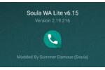 Whatsapp lite terbaru januari 2020 v6.15 com.wa